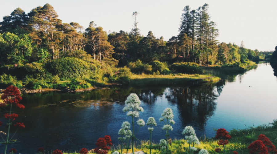 Ballynahinch Castle Grounds, Connemara, West Ireland